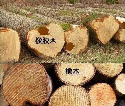 别再上当了橡木和橡胶木竟然大不相同